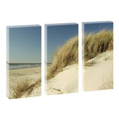 Top Bilder Kunstdruck auf Leinwand XXL Düne  3-Teiler-je 40cm*80cm V0500209