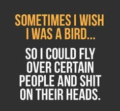 Sometimes I wish I was a bird..... So I could fly over certain people and shit on their heads.