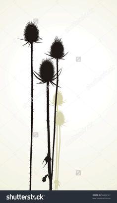 Illustration Vector Silhouette Of Thistle - 50456161 : Shutterstock
