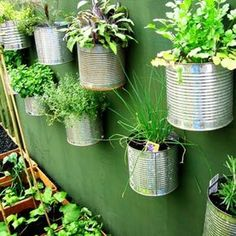 recycled container herb garden wall A vertical garden doean't have to be in pockets! Vertical Gardens, Small Gardens, Outdoor Gardens, Mini Gardens, Vertical Planter, Vertical Farming, Container Herb Garden, Diy Herb Garden, Herb Gardening