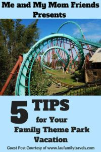 Top 5 Tips for Your Family Theme Park Vacation - meandmymomfriends.com