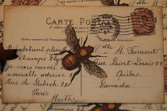 BEE Altered Art Carte Postal Tags or Postcards
