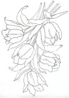 Tulipany schemat