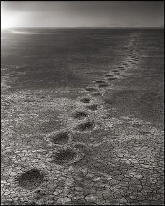 Nick Brandt Elephant Footprints, Amboseli, 2012