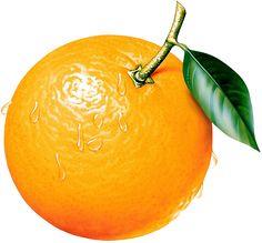 Orange Clipart Picture