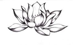 Lotus flower. This would be great for a tattoo.