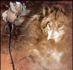 Lovers of Wolves