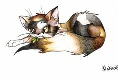 -I'm not a cat fan I'm a warrior cat fan- I think this is suppose to be Spottedleaf