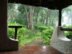 Pluie tropicale
