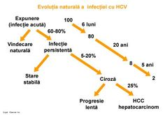 Infectia cu virusul hepatitei C (HCV) este depistata cel mai frecvent cu ocazia unor investigatii de rutina sau ca urmare a unei simptomatologii polimorfe