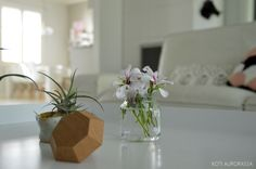 #details #livingroom #kannustalo #kotiaurorassa