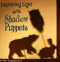 Alberta Grade 4 Science Topic D  -  Light and Shadows - Cross Curricular with LA/Drama- Shadow Puppets