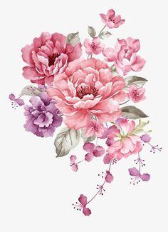 Pintura de Flores cor - de - Rosa, Flores De Material, Aquarela De Flores, Flores Cor - De - RosaImagem PNG
