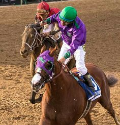 Kentucky Derby Winner California Chrome wins his Preakness Stakes 5/17/2014