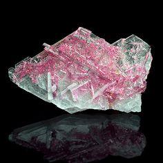 Minerals and Crystals — Tourmaline on Cleavelandite - Cruzeiro Mine, Doce...