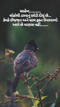 Sarcastic Quotes, True Quotes, Motivational Quotes, Antique Quotes, Girly Attitude Quotes, Gujarati Quotes, Memories Quotes, Zindagi Quotes, Osho