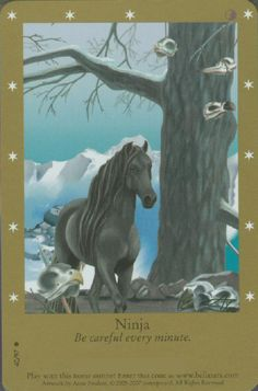 pictures of bella sara Halloween American Card, Jumping Saddle, Horse Illustration, Beauty In Art, Dragon Pictures, Divine Light, Oracle Cards, Horse Art, Lion Sculpture