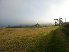 Misty Whitesheet hill