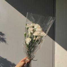 u deserve a million flowers Cream Aesthetic, Flower Aesthetic, Aesthetic Light, Aesthetic Green, Pretty Flowers, White Flowers, White Roses, Fresh Flowers, My Flower