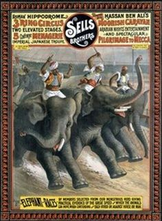 Vintage Sells Brothers 3 Ring Circus Poster