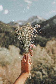 flower aesthetic flower, retro, oldie, old Plant Aesthetic, Flower Aesthetic, Aesthetic Photo, Aesthetic Pictures, Boho Aesthetic, Aesthetic Dark, Aesthetic Grunge, Photography Aesthetic, Purple Aesthetic