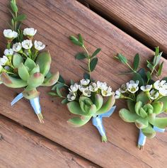 Succulent boutonnieres with wax flower accents for a sweet spring wedding.