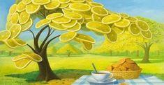 Lemon Garden II by Vitaly Urzhumov 2018 Lemon Painting, Vash, Melting Crayons, Summer Fruit, Artist Names, Prismacolor, Community Art, Art World, Lovers Art