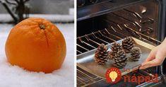 Už neminiete ani euro za umelé vône: Šikovné gazdinky našli úžasnú fintu, vďaka ktorej to bude u vás krásne voňať, aj keď ste práve dosmažili 20 rezňov! Grapefruit, Helpful Hints, Christmas Crafts, Candles, Orange, Blog, Minion, Funguje To, Hacks