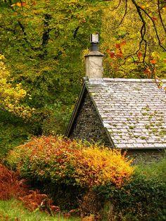 Autumn goes everywhere.