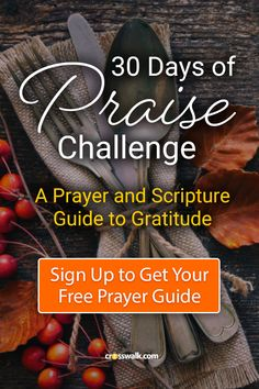 When our hearts are full of praise our lives are full of power! Take the free 30 Days of Praise Gratitude Challenge and walk with the Lord each morning. babies flight hotel restaurant destinations ideas tips Prayer Scriptures, Bible Prayers, Faith Prayer, Bible Verses, Prayer Box, Days Of Praise, Inspirational Prayers, Bible Encouragement, Bible Lessons