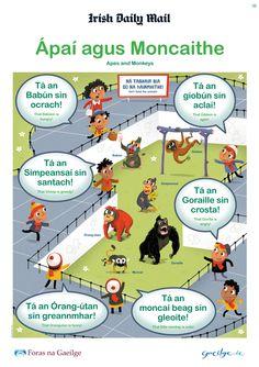 Irish Language Posters | Gaeilge Gaelic Words, Irish Language, Scottish Gaelic, Irish Culture, Primary Teaching, Language Lessons, European Languages, Claddagh, Learning
