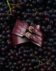 Niklas Alm- Belt and fruits...:) #style #accessories #fashion #photography