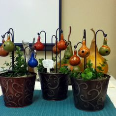 gourd garden creations | ... hung from shepherd's crooks. Great for a miniture or fairy garden