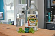 This homemade bug spray for plants will keep bugs from eating and infecting your plants. It doesn't contain a bunch of chemicals, so your kids can help garden. Fruit Trees, Articles, Water Bottle, Gardening, Plastic, Drinks, Food, Gourd, Eten