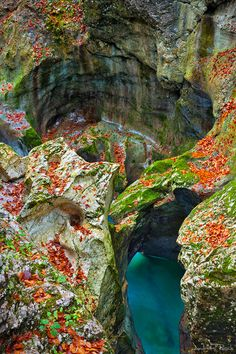 Mostnica Gorge - Slovenia//To see the beauty of nature in her own settings: now that would be a gift.Mostnica Gorge - Slovenia//To see the beauty of nature in her own settings: now that would be a gift. Places Around The World, Oh The Places You'll Go, Places To Travel, Places To Visit, Around The Worlds, What A Wonderful World, Beautiful World, Beautiful Places, Amazing Places