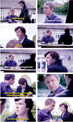Sherlock's pleased look at the end. *le sigh* No one can argue that they do love each other in their own way.