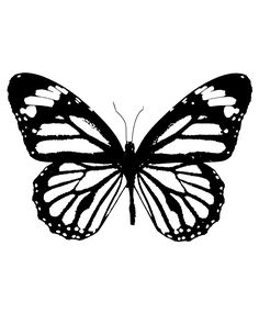 Download your free Butterfly Stencil here. Save time and start your project in…