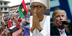 The United States Government has said it does not consider the Indigenous People of Biafra a terrorist organisation. Last week the Federal High Court in Abuja gave a judicial backing the executive order of President Muhammadu Buhari outlawing the group and its activities in the country. The court granted the order to proscribe the group on Wednesday. It declared that the activities of the group constituted acts of terrorism. The Federal Government also accused France and the United Kingdom…