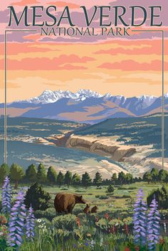Mesa Verde National Park, Colorado - Bear Family & Flowers - Lantern Press Poster