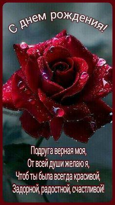 Happy Birthday Wishes, Floral, Kuchen, Happy Bday Wishes, Flowers, Happy Birthday Greetings, Birthday Wishes