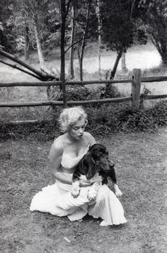 1957: Marilyn with her Bassett Hound, Hugo. I love Marilyn and I love Bassetts.