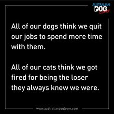 All of our dogs think we quit our jobs to spend more time with them. All of our cats think we got fired for being the loser they always knew we were. Funny Signs, Funny Jokes, Hilarious Sayings, Dog Quotes Funny, Funny Minion, Sarcastic Quotes, Sassy Quotes, Twisted Humor, Really Funny