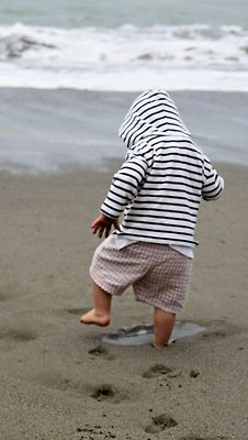 Once you get cape sand between your toes...you want to go back for more!