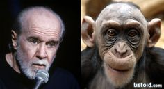 animals that look like celebrities George Carlin funny
