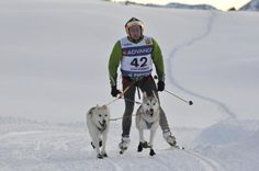 Mushing in the Lleida Pyrenees (Spain). www.lleidatur.com     Photography: @Celiasan_