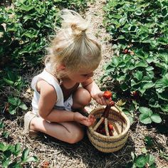 There is a garden in every childhood, an enchanted place where colours are brighter, the air softer, and the morning more fragrant than ever again... ~Elizabeth Lawrence | @andwhatelse