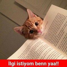 İlgi istiyom benn yaa!! :))  #mizah #matrak #espri #komik #şaka #gırgır #sözler #güzelsözler #komiksözler #caps