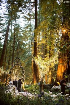 Medieval fantasy wedding in Big Sur, CA. This looks so enchanting. The forest area cost million. wedding dance floor Inside the Extravagant Wedding of Sean Parker and Alexandra Lenas Enchanted Forest Wedding, Woodland Wedding, Wedding In Forest, Magical Wedding, Enchanted Garden, Autumn Wedding, Big Sur Wedding, Dream Wedding, Trendy Wedding