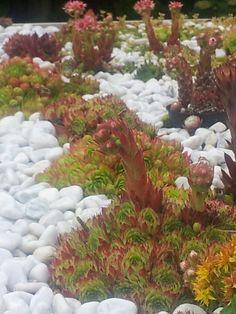 Amazing Gartenbau Garten G rtner Gartenpflege Gartengestaltung garden gardening gardener landscape gardening Garten Garden Pinterest Gardens