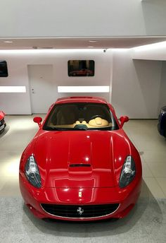 Ferrari California Ferrari California, Car Girls, Super Cars, Engineering, Purple, Big, Cars, Technology, Viola